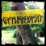 Thai Signs: Parking Lot